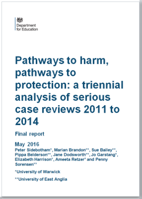 Pathways to Harm, Pathways to Protection: final report cover
